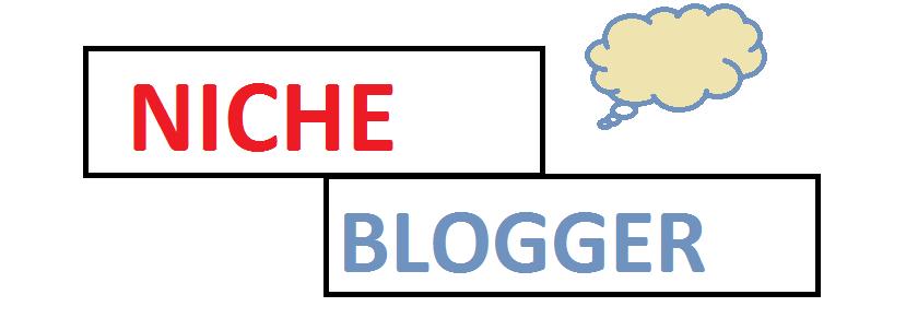 Niche blogging www.expertshout.com